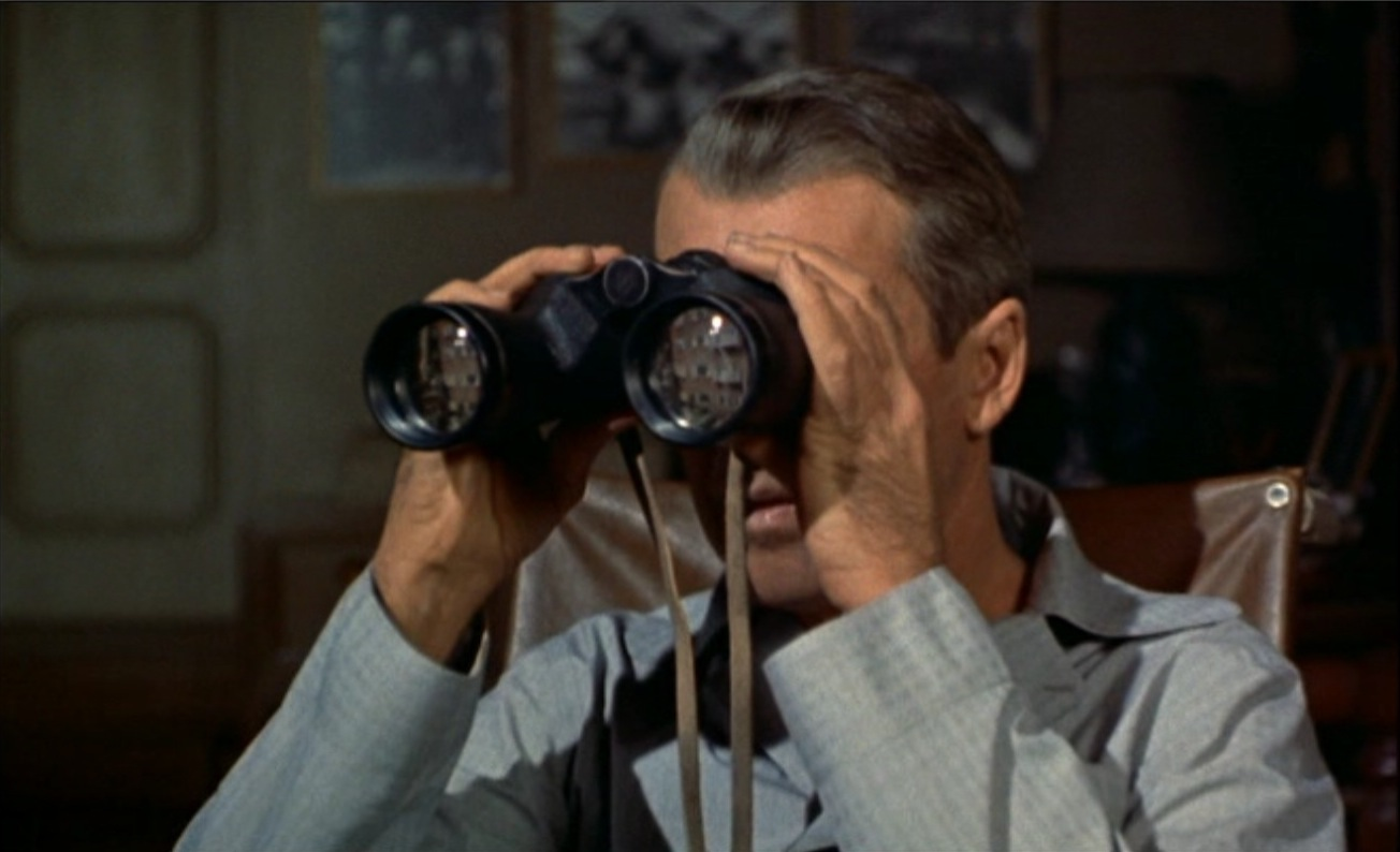 rear window short story summary
